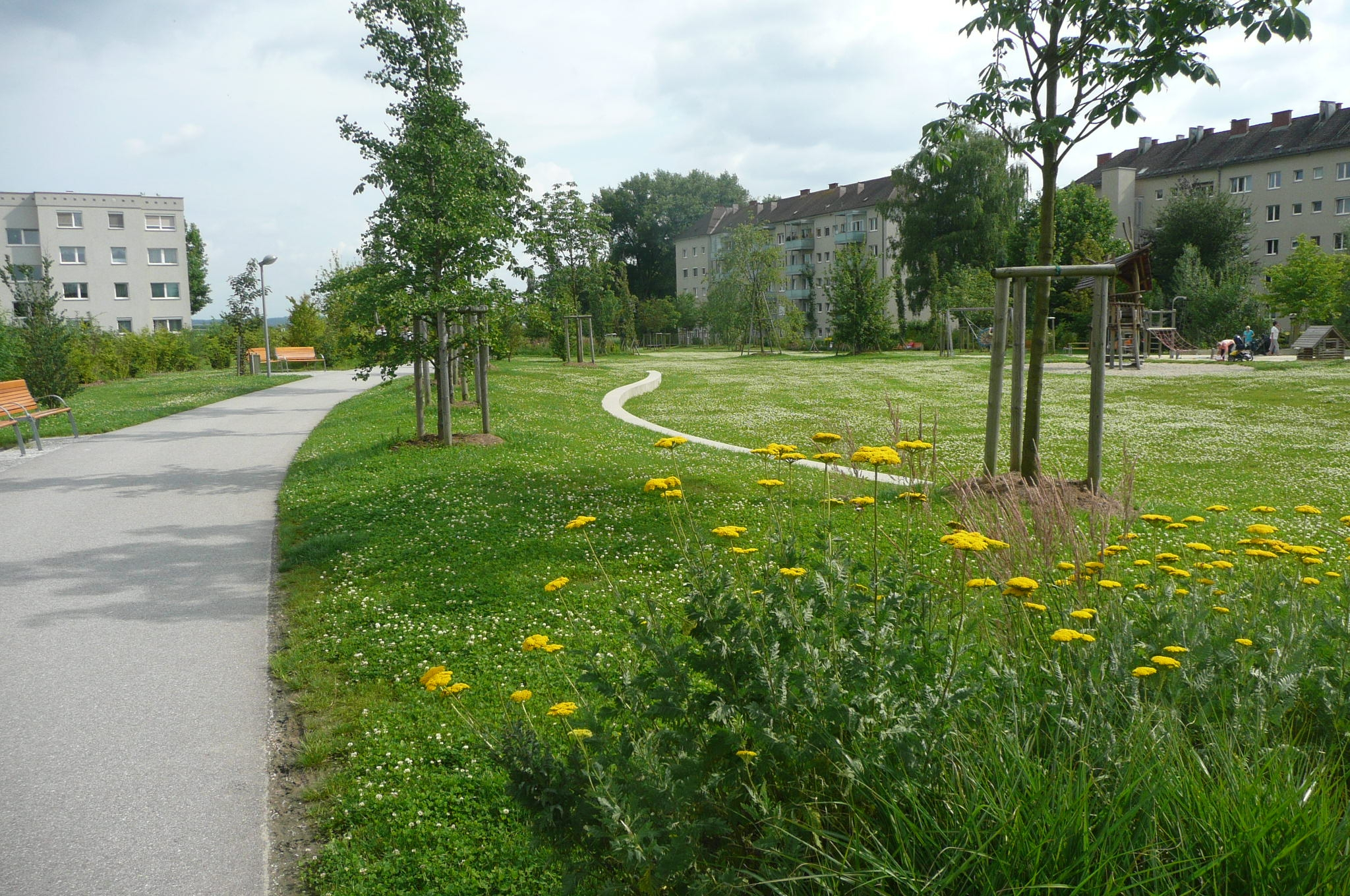 urban heat island and green infrastructure By embracing timeless principles of urban  a review of the current research into the effectiveness of green streets and green infrastructure finds gaps in.