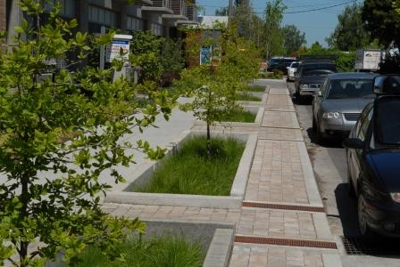 Green Infrastructure Streetscape