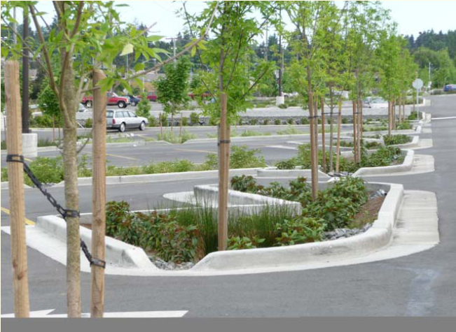 Green Infrastructure Parking Islands